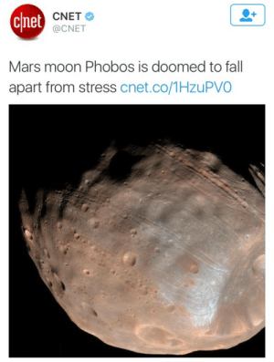 Fall, Shit, and Target: chet  CNET  @CNET  Mars moon Phobos is doomed to fall  apart from stress cnet.co/1HzuPVO humor-n-shit-blog: same
