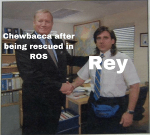 Sorry Chewy: Chewbacca after  being rescued in  ROS  Rey Sorry Chewy