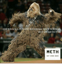 CHEWBACCA PLAYING ASEBALL ISN'T NORMAL  MBUT ON METH IT IS  METH  NOT eveN ONce. Chewbacca has a meth problem.