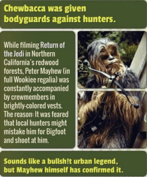 Bigfoot, Chewbacca, and Jedi: Chewbacca was given  bodyguards against hunters.  While filming Return of  the Jedi in Northern  California's redwood  forests, Peter Mayhew (in  full Wookiee regalia) was  constantly accompanied  by crewmembers in  brightly-colored vests.  The reason: It was feared  that local hunters might  mistake him for Bigfoot  and shoot at him.  Sounds like a bullsh!t urban legend,  but Mayhew himself has confirmed it. omg-humor:Bigfoot with a crossbow!