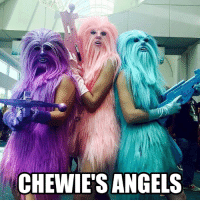 Af, Funny, and Sexy: CHEWIE'S ANGELS Sexy AF