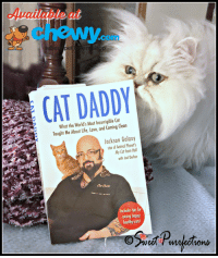 Check out our review of Cat Daddy: What The World's Most Incorrigible Cat Taught Me About Life, Love, and Coming Clean. Cat Daddy is the story of Jackson Galaxy, from the TV series, My Cat From Hell on Animal Planet.  We received this book from Chewy.com as part of the #ChewyInfluencer program. http://bit.ly/2tx3IJ3  #sponsored.: chewy  com  CAT DADDY  What the World's Most Incorrigible Ca  aught Me About Life, Love, and Coming Clean  Jackson Galaxy  star of Animal Planet's  My Cat fiom Hell  with Joel Defin  Includes fips for  aising happy  healthy cats Check out our review of Cat Daddy: What The World's Most Incorrigible Cat Taught Me About Life, Love, and Coming Clean. Cat Daddy is the story of Jackson Galaxy, from the TV series, My Cat From Hell on Animal Planet.  We received this book from Chewy.com as part of the #ChewyInfluencer program. http://bit.ly/2tx3IJ3  #sponsored.