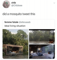Dank, Living, and 🤖: chib  @Chibleee  did a mosquito tweet this  femme fatale @eliesaaab  Ideal living situation