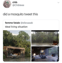 "Memes, Living, and Mosquito: chib  @Chibleee  did a mosquito tweet this  femme fatale @eliesaaab  Ideal living situation <p>We&rsquo;re onto you via /r/memes <a href=""https://ift.tt/2zUgu8i"">https://ift.tt/2zUgu8i</a></p>"