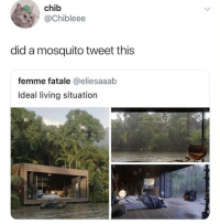 Funny, Living, and Mosquito: chib  @Chibleee  did a mosquito tweet this  femme fatale @eliesaaab  Ideal living situation Major faux @vibes Alert