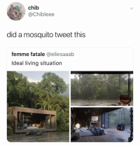 Bitch, Alligator, and Dank Memes: chib  @Chibleee  did a mosquito tweet this  femme fatale @eliesaaab  ldeal living situation (1st of the month arrives) Alligator: rents due bitch
