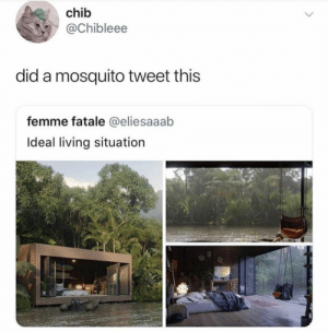 Dank, Memes, and Target: chib  @Chibleee  did a mosquito tweet this  femme fatale @eliesaaab  Ideal living situation meirl by PhantomFuck FOLLOW HERE 4 MORE MEMES.