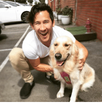 Chica wants you to know that Tour Tickets are NOW ON SALE!! Go to markiplier.com for all the details! Link is also in my bio!: Chica wants you to know that Tour Tickets are NOW ON SALE!! Go to markiplier.com for all the details! Link is also in my bio!