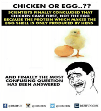 Be Like, Meme, and Memes: CHICKEN OR EGG..??  SCIENTISTS FINALLY CONCLUDED THAT  CHICKEN CAME FIRST, NOT THE EGG  BECAUSE THE PROTEIN WHICH MAKES THE  EGG SHELL IS ONLY PRODUCED BY HENS  AND FINALLY THE MOST  CONFUSING QUESTION  HAS BEEN ANSWERED  1  @DESIFUN @DESIFUN @DESIFUN DESIFUN.COM Twitter: BLB247 Snapchat : BELIKEBRO.COM belikebro sarcasm meme Follow @be.like.bro