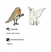 Memes, Birds, and Mind: chickenly  birds, with arms  inverted-mind-inc  I agree. dost thou even HOIST? - Max textpost textposts