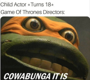 Game of Thrones, Game, and Thrones: Child Actor Turns 18  Game Of Thrones Directors:  COWABUNGA ITIS Cowabunga It Is