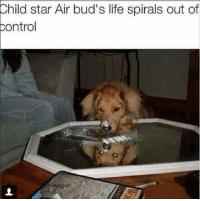 Sent in by a fan.: Child star Air bud's life spirals out of  control Sent in by a fan.
