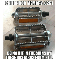 Memes, 🤖, and The Shins: CHILDHOOD MEMORY #201  BEING HIT IN THE SHINS BY  THESE BASTARDS FROM HELL