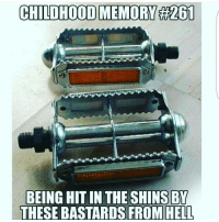 Memes, 🤖, and The Shins: CHILDHOOD MEMORY #201  BEING HIT IN THE SHINS EY  THESE BASTARDS FROM HELL ohmybushes
