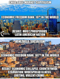 Memes, Capitalism, and Free: CHILE FREHMARKET CAPITALISM  ECONOMIC FREEDOM RANKS 10TH IN THE WORLD  RESUL: MOST PROSPEROUS  LATINAMERICAN NATION  VENEZUELA SOCIALISM  ECONOMICFREEDOM RANK: 18TH IN THEWORLD  RESULT ECONOMIC COLLAPSE COUNTRYWIDE  STARVATION, WIDESPREADILLNESS,  LOOTING VIOLENTCRIMES Free Markets Create Prosperity. Socialism Creates Poverty. #SocialismSucks