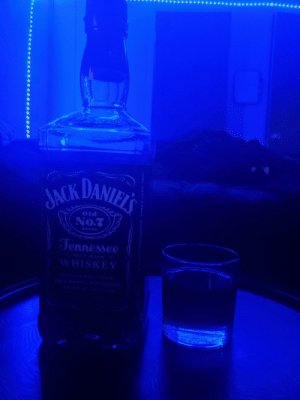Chilling with my boy Jack Daniels, great guy!: Chilling with my boy Jack Daniels, great guy!