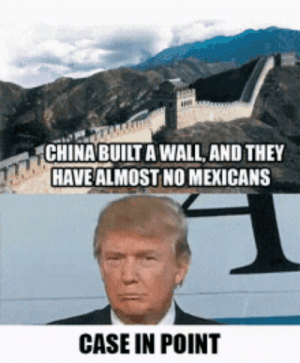 Obviously: CHINA BUILT A WALL, AND THEY  HAVE ALMOST NO MEXICANS  CASE IN POINT Obviously