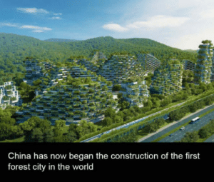 China, Guess, and World: China has now began the construction of the first  forest city in the world It wont last long I guess