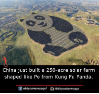 Memes, China, and Panda: China just built a 250-acre solar farm  shaped like Po from Kung Fu Panda  /didyouknowpagel  @didyouknowpage