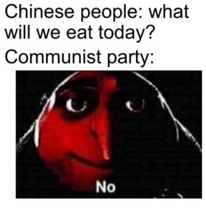 Party, Chinese, and Today: Chinese people: what  will we eat today?  Communist party:  No Only 300 IQ will understand