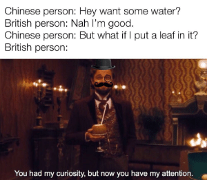 Memes, Shit, and Chinese: Chinese person: Hey want some water?  British person: Nah I'm good.  Chinese person: But what if l put a leaf in it?  British person:  You had my curiosity, but now you have my attention. That's good shit via /r/memes http://bit.ly/2VX1a1a
