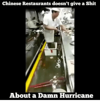 Memes, Shit, and Chinese: Chinese Restaurants doesn't give a Shit  About a Damn Hurricane 😳