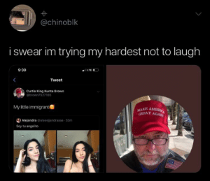 i stalked his account.. YiKeS: @chinoblk  i swear im trying my hardest not to laugh  9:39  LTE  Tweet  Curtis King Kunta Brown  @brown7527165  My little immigrant  MAKE AMERIC  GREAT AGAIN  Alejandra @aleeejandraaaa 33m  Soy tu angelito  ENCE i stalked his account.. YiKeS