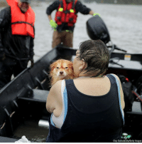 Rescue workers from Township No. 7 Fire Department and volunteers from the Civilian Crisis Response Team use a boat to rescue a woman and her dog from their flooded home during Hurricane Florence in James City, North Carolina.: Chip Somodevilla/Getty lmages Rescue workers from Township No. 7 Fire Department and volunteers from the Civilian Crisis Response Team use a boat to rescue a woman and her dog from their flooded home during Hurricane Florence in James City, North Carolina.