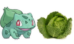 chipsprites:  Steal his look - Bulbasaur Cabbage: $0.50 : chipsprites:  Steal his look - Bulbasaur Cabbage: $0.50