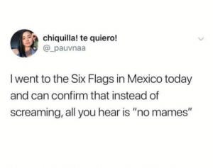 "Mexico, Six Flags, and Today: chiquilla! te quiero!  @_pauvnaa  I went to the Six Flags in Mexico today  and can confirm that instead of  screaming, all you hear is ""no mames"" No Mames xd"