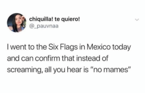 "😂😂😂: chiquilla! te quiero!  @_pauvnaa  I went to the Six Flags in Mexico today  and can confirm that instead of  screaming, all you hear is ""no mames"" 😂😂😂"