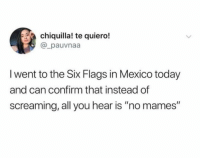 """Memes, Mexico, and Six Flags: chiquilla! te quiero!  @_pauvnaa  l went to the Six Flags in Mexico today  and can confirm that instead of  screaming, all you hear is """"no mames"""" 😂😂😂"""