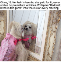 "chloe: Chloe, 19. Her hair is hers bc she paid for it, never  smiles bc premature wrinkles. Whispers ""Baddest  bitch in the game"" into the mirror every morning."
