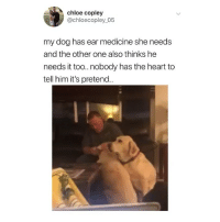 Memes, Twitter, and Heart: chloe copley  @chloecopley_05  my dog has ear medicine she needs  and the other one also thinks he  needs it too.nobody has the heart to  tell him it's pretend. wowow 😭😭😭 (@chloecopley_05 on Twitter)