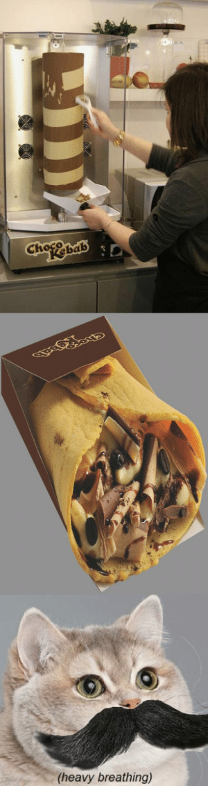 Tumblr, Blog, and Chocolate: Cho hab  (heavy breathing) srsfunny:Chocolate Kebab
