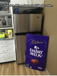 <p>All The Chocolate I Need For This Week.</p>: Chocolafe delivered to work. Fridge for scale..  DAIRY  MILK <p>All The Chocolate I Need For This Week.</p>