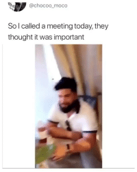 Memes, Today, and Thought: @chocoo_moco  So l called a meeting today, they  thought it was important Follow @bitchieguide before they go private 😱