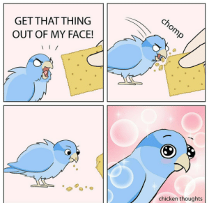 Hooman giving you new food!! via /r/wholesomememes https://ift.tt/361YZ1w: chomp  GET THAT THING  OUT OF MY FACE!  chicken thoughts Hooman giving you new food!! via /r/wholesomememes https://ift.tt/361YZ1w