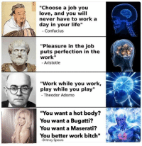"""the true philosophers of our time: """"Choose a job you  love, and you will  never have to work a  day in your life""""  Confucius  """"Pleasure in the job  puts perfection in the  work""""  Aristotle  """"Work while you work,  play while you play  Theodor Adorno  """"You want a hot body?  You want a Bugatti?  You want a Maserati?  You better work bit  -Britney Spears the true philosophers of our time"""