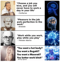 """the greatest philosophers of all time: """"Choose a job you  love, and you will  never have to work a  day in your life  Confucius  """"Pleasure in the job  puts perfection in the  work""""  Aristotle  """"Work while you work,  play while you play  Theodor Adorno  """"You want a hot body?  You want a Bugatti?  You want a Maserati?  You better work bit  Britney Spears the greatest philosophers of all time"""