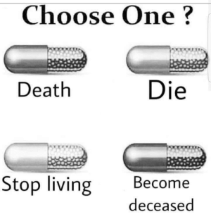 Choose One, Instagram, and Tumblr: Choose One?  Death  Die  Stop living Become  deceased melonmemes:  Follow us on instagram for the best content!: https://www.instagram.com/realmelonmemes