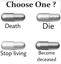 Choose One, Irish, and Tumblr: Choose One?  Death  Die  Stop living Become  deceased vaporwavevocap:  searching-for-repentance: drum-fed:   irish-sand-pirate:  Unalive  Liven't   LivAIN'T  Necromorphosis  Commit die
