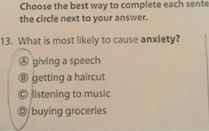 Me irl: Choose the best way to complete each sente  the circle next to your answer.  13. What is most likely to cause anxiety?  A giving a speech  B getting a haircut  C listening to music  D buying groceries Me irl