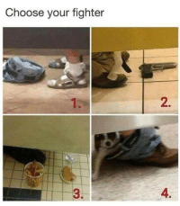 Choose,  Fighter, and Your: Choose your fighter  2.