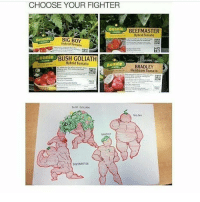 !! out of captions !!: CHOOSE YOUR FIGHTER  Bunnie  BEEF MASTER  Hybrid Tomato  Bonnie  BIG BOY  Tomato  donnie  BUSH GOLIATH  Hybrid Tomato  Bonnie  BRADLEY  Heirloom Tomato  BEEFMASTEA !! out of captions !!