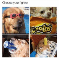 Irl, Me IRL, and Choose: Choose your fighter Me irl