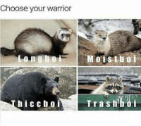 peace is not an option: Choose your warrior  hiccb.0.i  Tr a s f peace is not an option