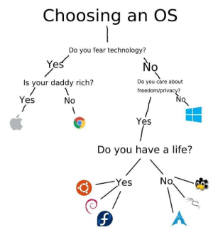The ultimate guide: Choosing an OS  Do you fear technology?  Yes  No  Do you care about  Is your daddy rich?  freedom/privacy?  Yes  No  Yes  Do you have a life?  No  Yes  1. The ultimate guide