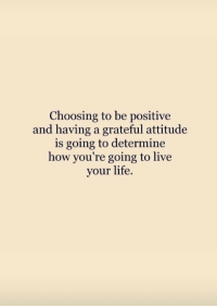 Life, Live, and Attitude: Choosing to be positive  and having a grateful attitude  is going to determine  how you're going to live  your life.