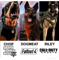 Memes, 🤖, and Chopped: CHOP  @TCMFGame  CHOP  DOGMEAT  RILEY  Fall  G H O S T S Chop, dog meat or riley ????????????????????? Who's cooler ? . 🔥I love red pandas🔥 🐼Follow my back up🐼 🎋@Evil._.Kermit🎋 📝Credit goes to:@ 〰〰〰〰〰〰〰〰〰〰〰〰〰〰〰〰〰〰 ❤️Double tap for more❤️ 💎Use TwisttFTW if you're a real fan💎 😸Pls like-comment-share-repost😸 🚫Negativity and promoting = block🚫 〰〰〰〰〰〰〰〰〰〰〰〰〰〰〰〰〰〰 ❌Ignore tags❌ Like4like Like4follow Ps4 Xbox Mlg Memes Lmfao Comedy Callofduty Gamingmemes Codiw Mwr Gaming Codmemes Funny Funnymemes Codbo2 Treyarch KontrolFreek Grips Shop Controllers Redpandanation